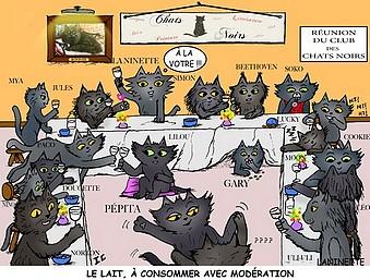 club-des-chats-noirs-2.jpg
